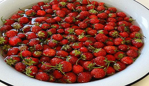 Промывка ягод